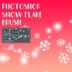 雪の結晶 ブラシ snow Blush